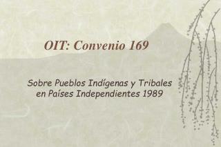 OIT: Convenio 169