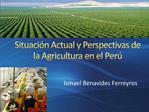 Situaci n Actual y Perspectivas de la Agricultura en el Per