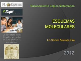 ESQUEMAS MOLECULARES