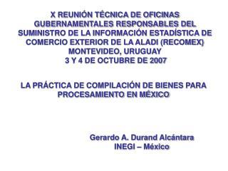 X REUNI N T CNICA DE OFICINAS GUBERNAMENTALES RESPONSABLES DEL SUMINISTRO DE LA INFORMACI N ESTAD STICA DE COMERCIO EXTE