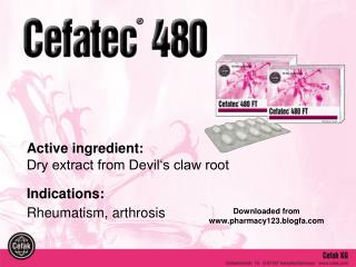 Active ingredient:  Dry extract from Devil s claw root