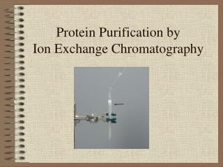Protein Purification by  Ion Exchange Chromatography
