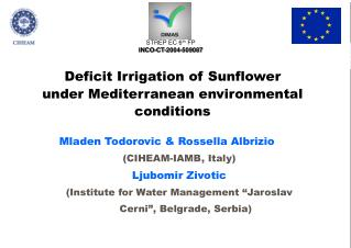 Deficit Irrigation of Sunflower under Mediterranean environmental conditions