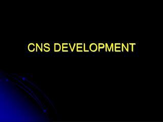 CNS DEVELOPMENT