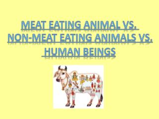 Meat Eating Animal vs.  Non-meat Eating Animals vs.  Human Beings
