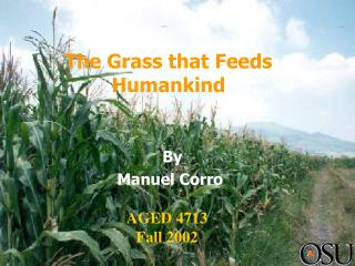 The Grass that Feeds Humankind