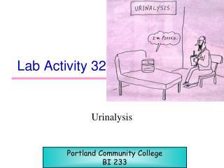 Lab Activity 32