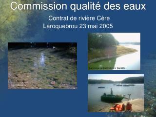 Commission qualit  des eaux  Contrat de rivi re C re Laroquebrou 23 mai 2005