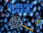 BLUEBERRY FARMERS