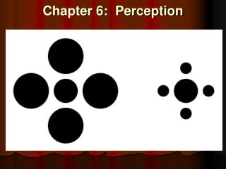 Chapter 6:  Perception