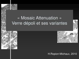 H.Ropion-Michaux, 2010