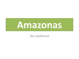 amazonas rainforest