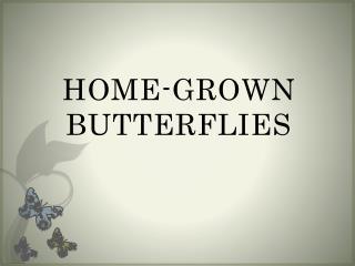 HOME-GROWN BUTTERFLIES