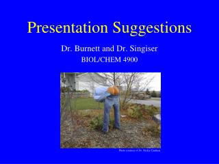 Presentation Suggestions