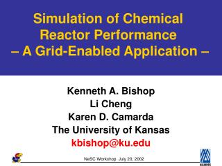 Simulation of Chemical Reactor Performance    A Grid-Enabled Application