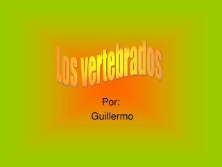 Por:  Guillermo