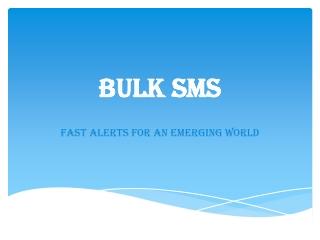Bulk SMS | Bulk SMS India