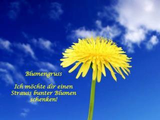 Blumengruss  Ich m chte dir einen Strauss bunter Blumen schenken