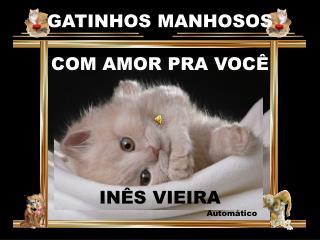 Gatinhos Manhosos com Amor pra Voc