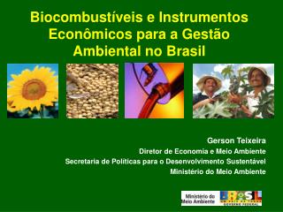 Biocombust veis e Instrumentos Econ micos para a Gest o Ambiental no Brasil