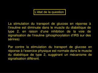 La stimulation du transport de glucose en r ponse   l insuline est diminu e dans le muscle du diab tique de type 2, en r