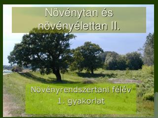 N v nytan  s n v ny lettan II.