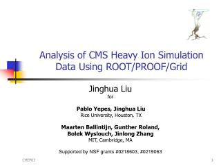 Analysis of CMS Heavy Ion Simulation Data Using ROOT