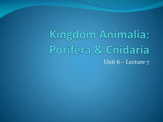 Kingdom Animalia: Porifera  Cnidaria