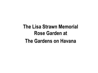 The Lisa Strawn Memorial Rose Garden at The Gardens on Havana