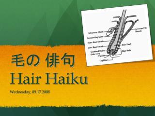 Hair Haiku