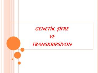 GENETIK  SIFRE  VE  TRANSKRIPSIYON