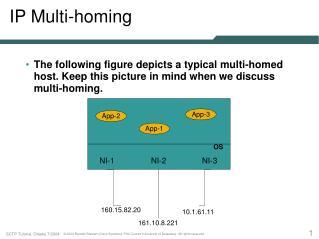 IP Multi-homing