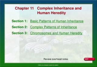 Section 1:   Basic Patterns of Human Inheritance