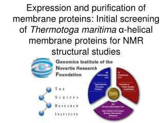 Expression and purification of membrane proteins: Initial screening of Thermotoga maritima a-helical membrane proteins f