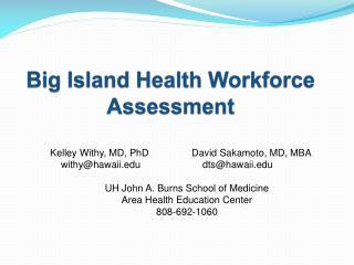 Big Island Health Workforce Assessment
