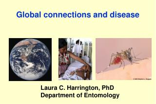 Global connections and disease