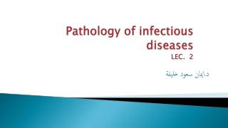 Immunological etiology of Glomerulonephritis
