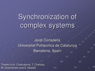 Synchronization of complex systems