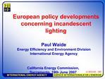 European policy developments concerning incandescent lighting