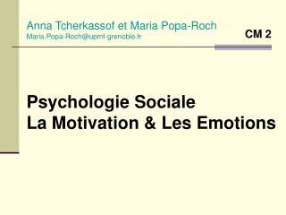 Psychologie Sociale La Motivation  Les Emotions