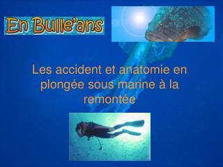 Les accident et anatomie en plong e sous marine   la remont e