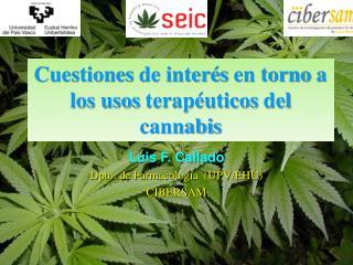 Cuestiones de inter s en torno a los usos terap uticos del cannabis