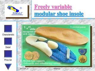 Freely variable  modular shoe insole