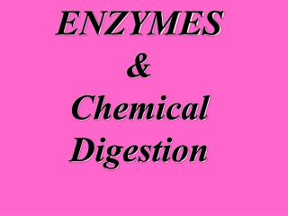 ENZYMES  Chemical Digestion