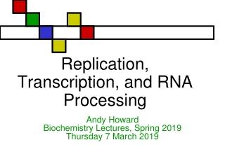 Bio 98 - Lecture 9  Enzymes II:  Enzyme Kinetics