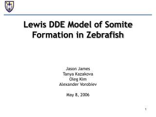 Lewis DDE Model of Somite Formation in Zebrafish