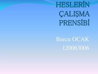 HESLERIN      ALISMA  PRENSIBI