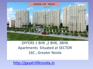 Gayatri Life Noida Extension