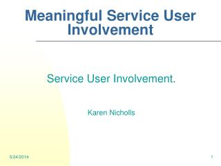 Meaningful Service User Involvement