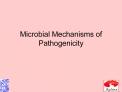 Microbial Mechanisms of Pathogenicity
